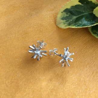 Spiky silver studs